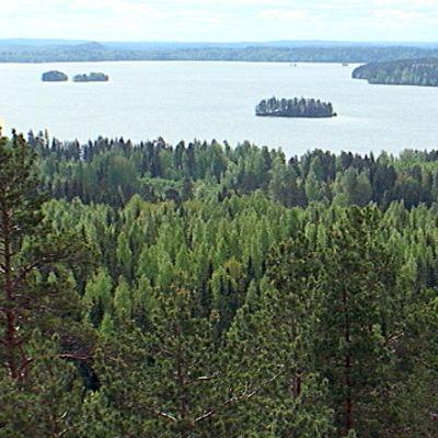 Kangasalan Vesijärvi