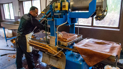 En man arbetar vid en press för äppelmust