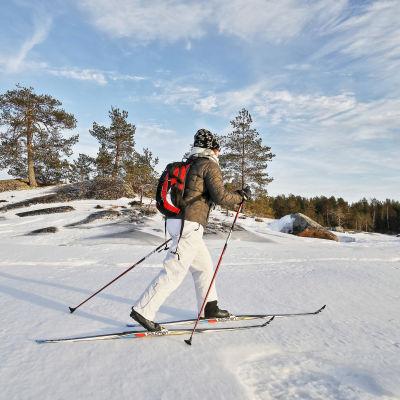 Skidåkare på isen på sjön Pielinen i februari 2017