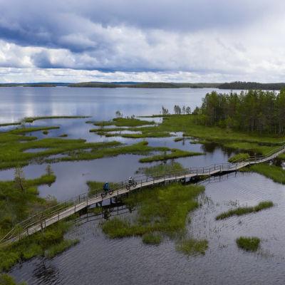 Maastopyöräilijöitä Hirsiniemen retkeilyreitillä.