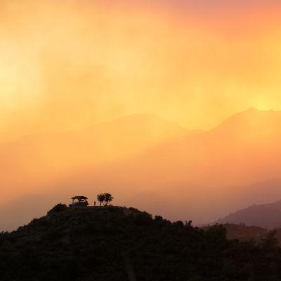 Utsikten ut över den brinnande skogen på bergen i Larnaca-regionen är förrädiskt vacker.