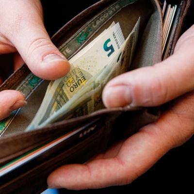 Euron seteleitä lompakossa.