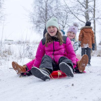Lapset laskee mäkeä Taivaskalliolla Helsingissä.