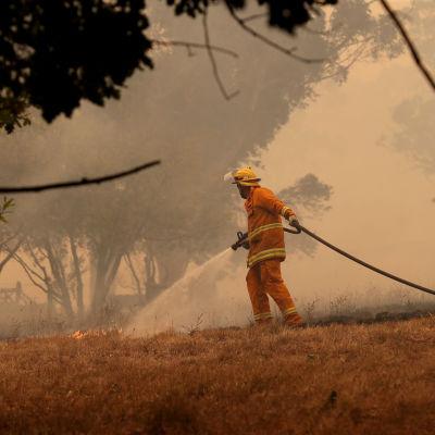 Brandman släcker markband i Australien.