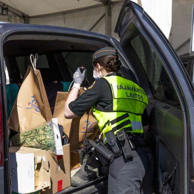 Rajavartija tutkii Virosta matkustajalaivalla saapuneen auton tavaratilaa.
