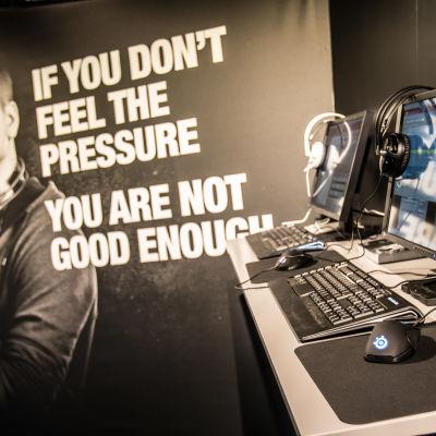 Bild på datorer från Dreamhack.