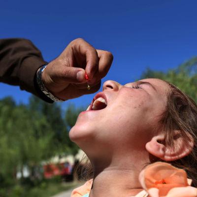 Barn får poliovaccin i Afghanistan.