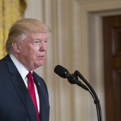 Donald Trump på en presskonferens i Washington den 20 april 2017