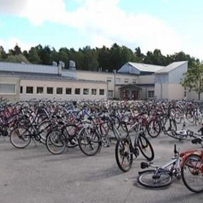 Raisiolaisen Vaisaaren koulun pihalla on oppilaiden polkupyöriä.