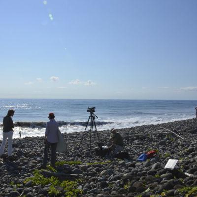 Representanter för media vid stranden Bois-Rouge på ön Réunion där en del av en Boeing 777-flygplansvinge hittats.