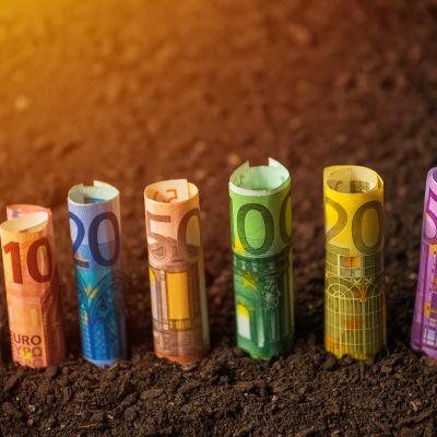 Eurosedlar på mylla.