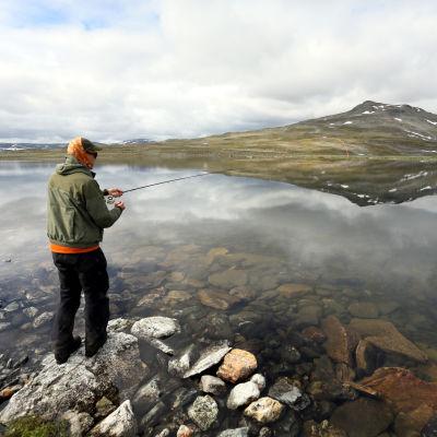 Mikko Peltola kalastaa Pitsusjärven rannalla