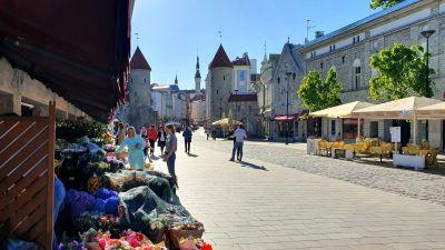 Virugatan i Tallinn med Viruporten och Gamla stan i bakgrunden.