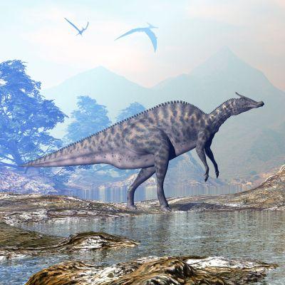 Illustration på en växtätande dinosaurie i släktet Saurolophus.
