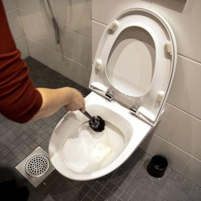 WC-istuinta pestään vessaharjalla.