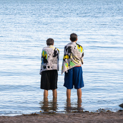 Två män tittar ut över vattnet.