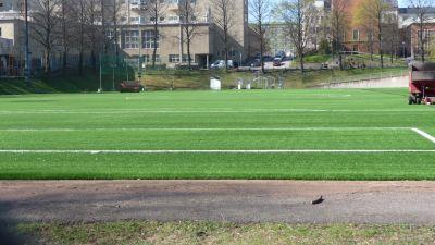 Konstgräset på Barkplan lyser grönt.