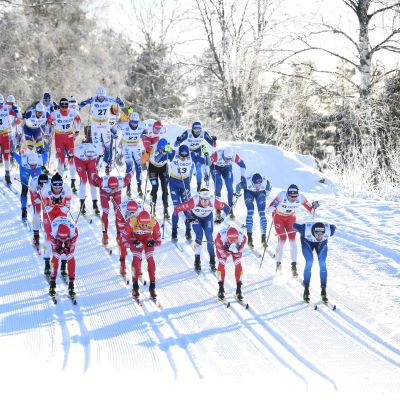 Världscupen i längdåkning i Falun.