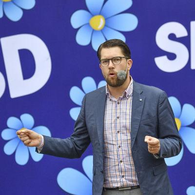 Jimmie Åkesson håller tal.