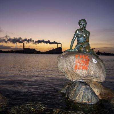 Merenneitopatsas. Kivessä vapautta Hongkongille vaativa teksti.
