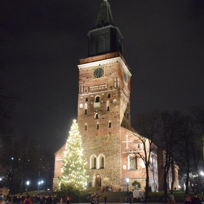 Turun tuomiokirkon joulukuusi jouluvalaustuksessa.