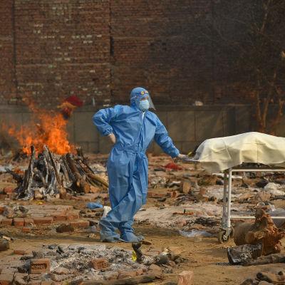 Man i skyddskläder kremerar ett coronaoffer i Indien.