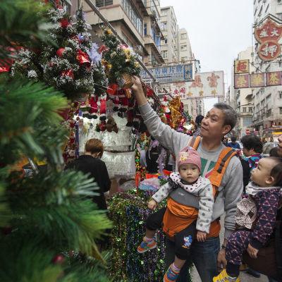 Hongkongbor väljer julgran