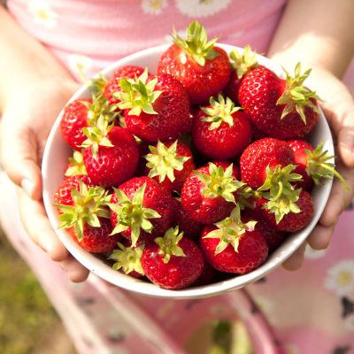 Flicka håller i skål med jordgubbar