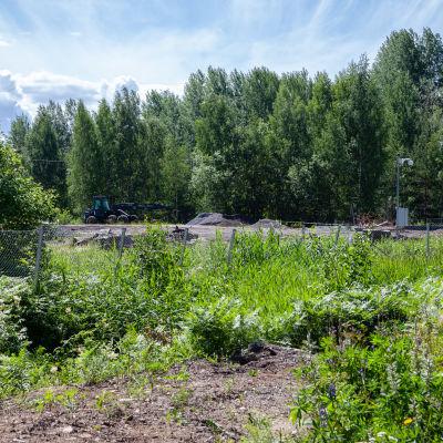 Rikkipitoista vettä suodattunut UPM:n Pappilanniemessä täyttömaasta Saimaaseen vuosien ajan. Nyt kuulemma korjattu tilanne.