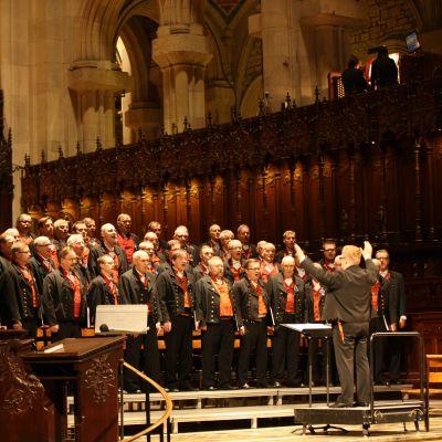 Jussien konserttikiertue suuntautui viimeksi Amerikkaan vuonna 2014. Yksi konserttipaikoista oli Saint John the Divine -katedraali New Yorkissa.