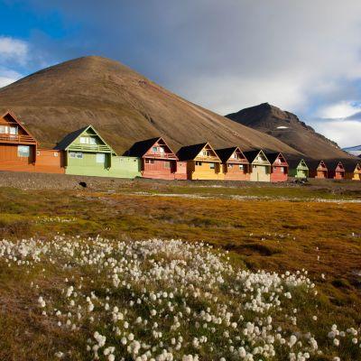 Taloja Longyearbyenissä