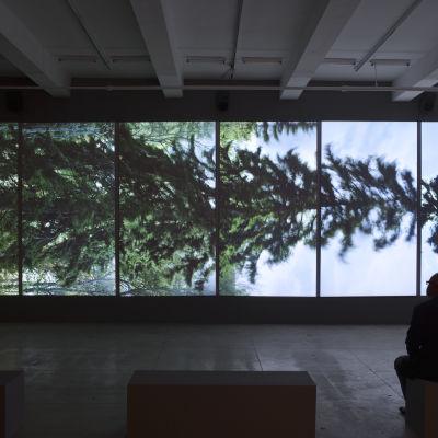 Eija-Liisa Ahtila, Vaakasuora-Horizontal, 2011, 6-kanavainen projisoitu installaatio.