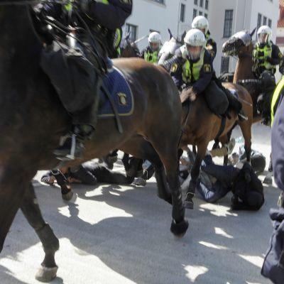 Polisen rider på demonstranter under en demonstration mot rasism i Malmö 23.8.2014.