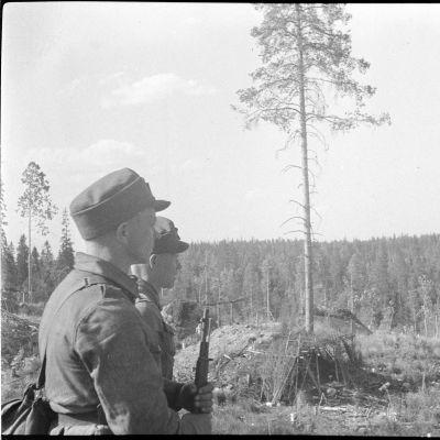 Två soldater blickar ut över skogsmark.