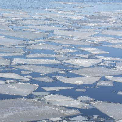 Jäät kelluvat veden pinnalla