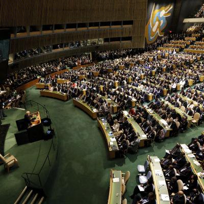 Trump talar på FN:s generalförsamling 2017.