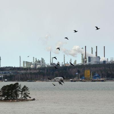 Sköldvik området med många pipor, rök ryker från skorstenen. En liten ö syns utanför och fåglar fyger på himlen.