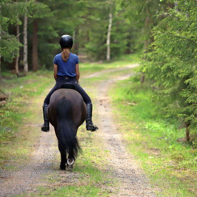 Nainen ratsastaa islanninhevosella metsätiellä.