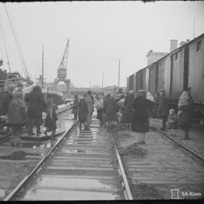 Ingermanländska flyktingar anländer med båt till Hangö.