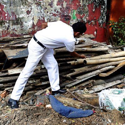 Myndigheter försöker stoppa dengueepidemin genom sanering.