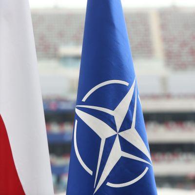 Polens och Natos flagga.