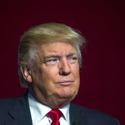 Donald Trump i huvudstaden Washington i juni 2016.