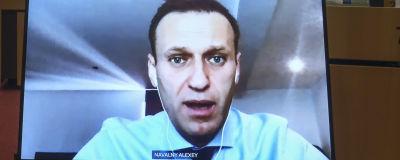 Aleksei Navalnyj på en storbildskärm i ett tomt europaprlament.