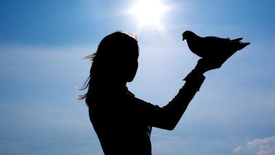 Silhuettimainen kuva, jossa nainen pitää kädellään lintua. Taustalla sininen taivas ja kirkkaasti paistava aurinko.