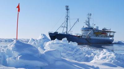 Norska forskningsfartyget RV Lance undersöker isar i Arktis