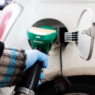 Nainen tankkaa autoa kumihanskat kädessä.