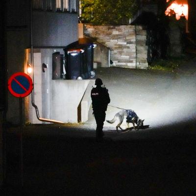 En polis och en hund granskar brottsplatsen.