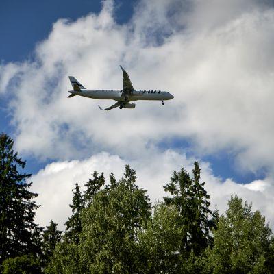 Lentokone puiden yllä