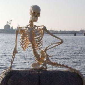 Merenneidon luuranko Kööpenhaminassa Pieni merenneito -patsaan paikalla aprillipäivänä 2010