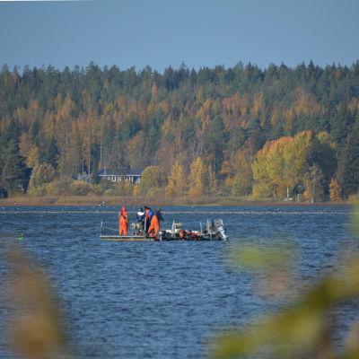 Fiskare är ute på sjön. Står på en flotte och en liten motorbåt är bredvid.